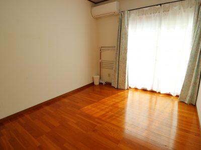 202 南側バルコニーのお部屋は0.5間づつの使いよい収納が2ヶ所にあります。