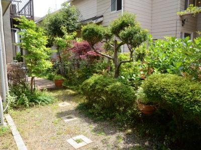 庭の様子。季節ごとに色々な植物が花を咲かせます。